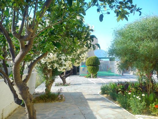 Photo of Apartments Niriides Psalidi