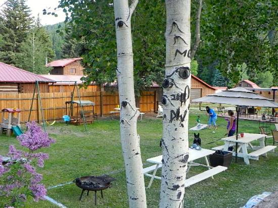 Hotel Ryland: Huge yard for relaxation and fun.