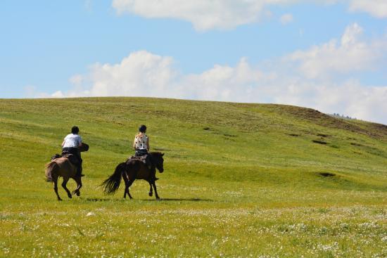Jalman Meadows Wilderness Camp: Horse Riding