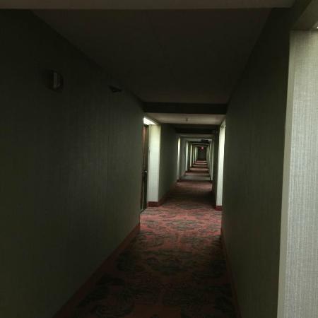 Hampton Inn Peoria-East At The River Boat Crossing: Dark hallways