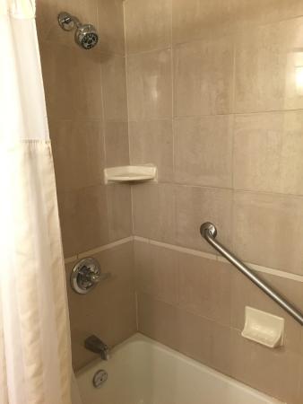 Hilton Garden Inn Saskatoon Downtown: Bathroom