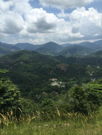 Casabrina Vacation Villas: View of scenery