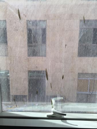 Petal Hotel : photo6.jpg