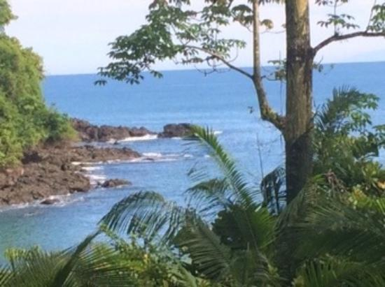 Copa de Arbol Beach and Rainforest Resort: The view from our cabina.
