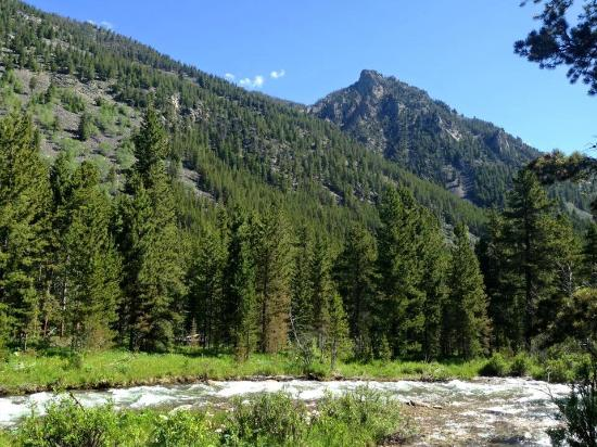 Lake Fork Trail: Don't trip looking up at the beautiful peaks