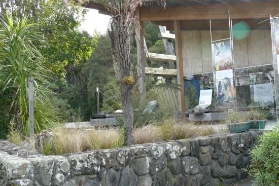 Kauaeranga Valley Visitor's Centre : Kauaeranga Valley DOC Visitor Centre - Aug 2014