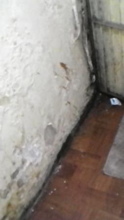 Hotel Indraprasth Auragabad: Corridor
