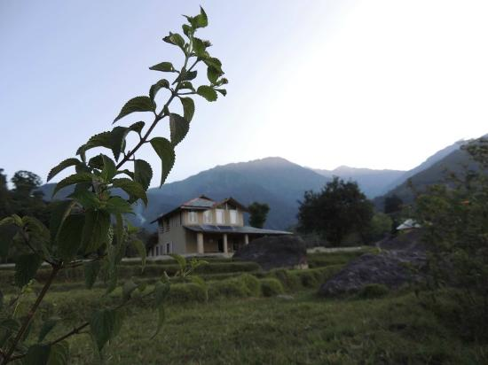 Landscape - Linger - The Earth House, Palampur: .