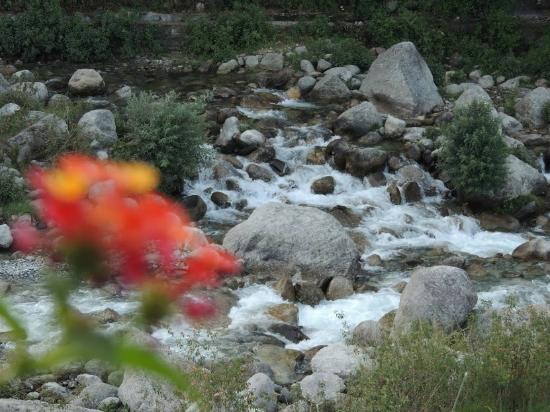 Linger - The Earth House, Palampur: .