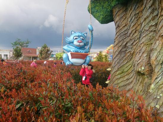 Кот в сочи парке