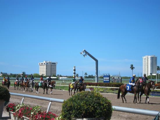 Gulfstream casino fl