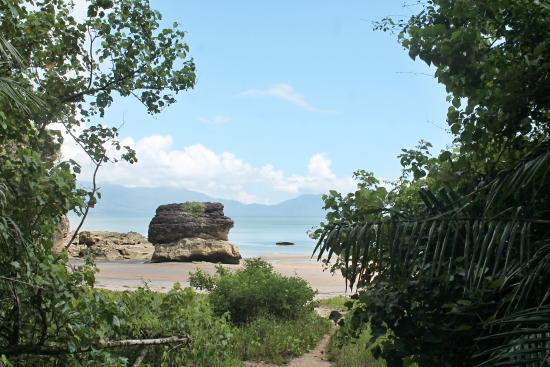 Bako National Park Hostel: bako