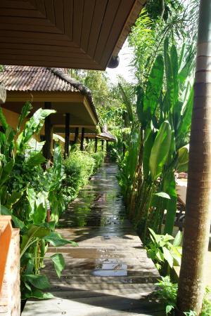 Sunda Resort: После освежающего дождя