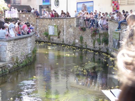 Cathedrale Notre Dame de Evreux: exterior of cathedral,town hall,duck race