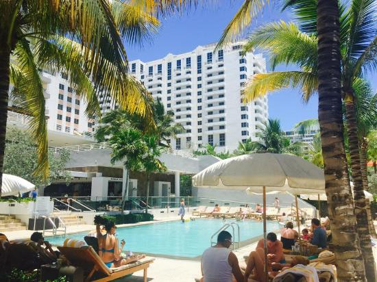 Royal Palm South Beach Miami A Tribute Portfolio Resort Poolside