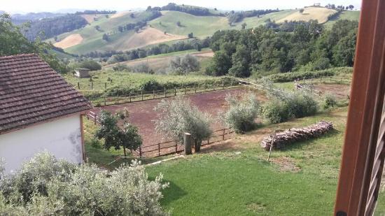 Agriturismo Montefiorentino: panorama dalla finestra della camera