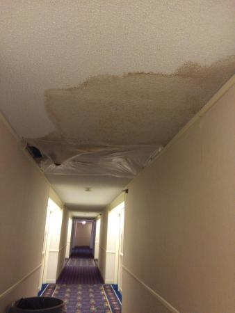 9th place doubletree warren place in tulsa roof leak on 9th floor not