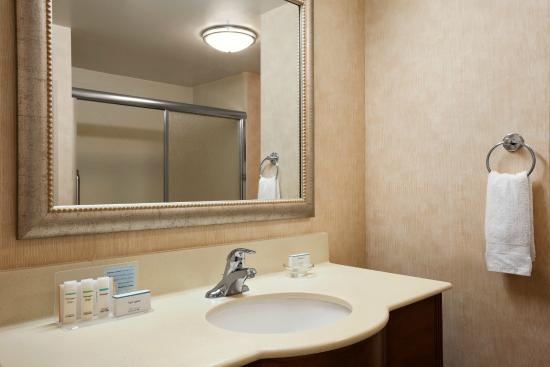 Hampton Inn Geneva: Guest Bathroom