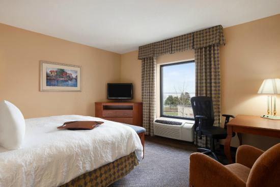 Hampton Inn Geneva: King Guestroom