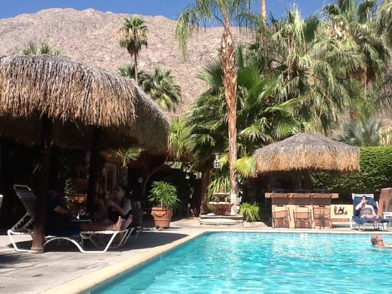 The Coyote Inn: Poolside view