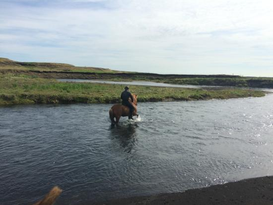 Hella Horse Rental: Crossing the river