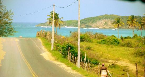 Dos Bananas Macao Beach Adventurous Dominican Republic