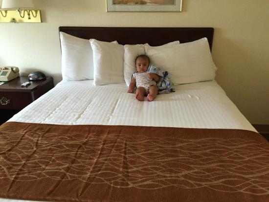 LakeHouse Hotel: room