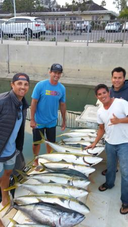 Дана-Пойнт, Калифорния: 13 Yellow Tail and 1 Yellow Fin Tuna