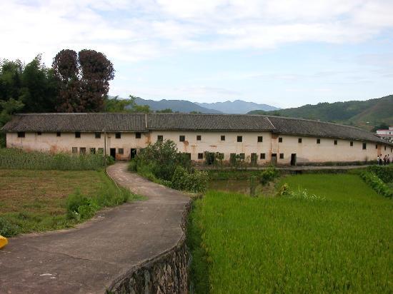 Dafudi Horn House: Backyard