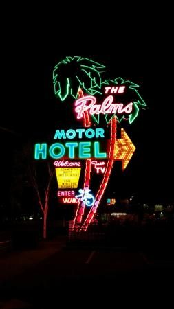 neon sign the sign is awesome picture of palms motel portland