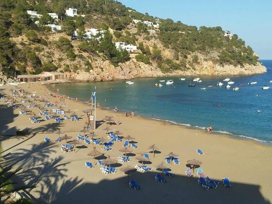 Veraclub Ibiza: Vista dalla Camera dell'Hotel