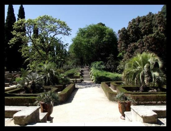 Jardin des plantes picture of jardin des plantes - Jardin des plantes de montpellier ...