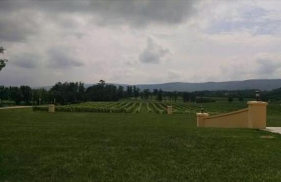 Breaux Vineyards: Beautiful!