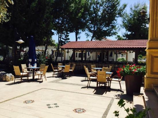 Altinkaya Holiday Resort: Pool Bar