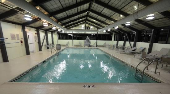 SpringHill Suites Chicago Elmhurst/Oakbrook Area: The large indoor heated pool at the Springhill Suites Elmhurst, IL