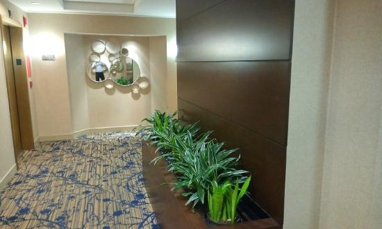 Eatontown, Nueva Jersey: 6th floor passage - Nice & positive!