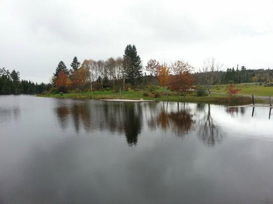 New Horton Lake Inn : Beautiful New Horton Lake