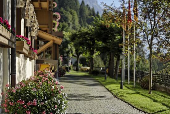 Hotel Alpenrose Wengen entrance