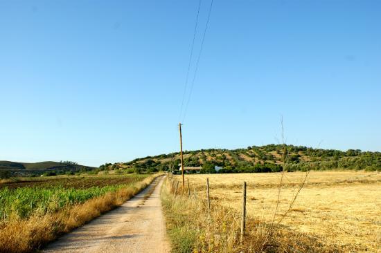Quinta das Achadas: view up to the Quinta