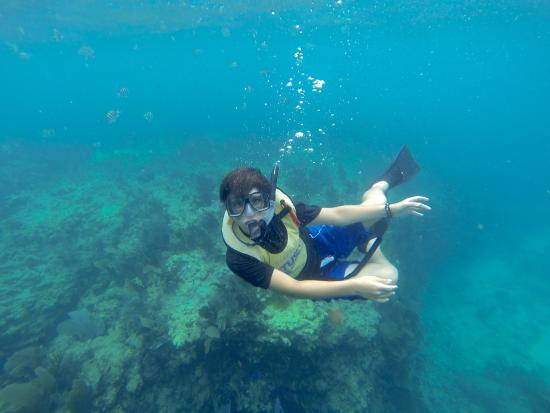 First Time Snorkeling For This Guy!
