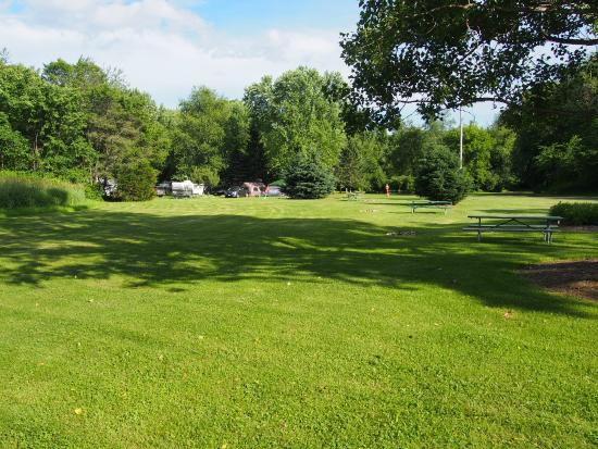 Wheeler's Campground grounds view 1