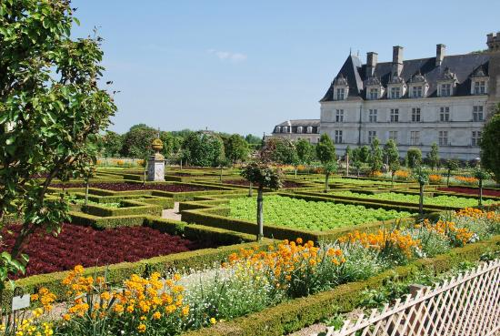 Jardins de villandry picture of chateau de villandry for Jardin villandry