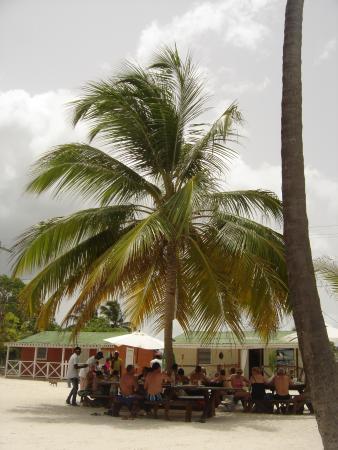 Bayahíbe, República Dominicana: repas à l'ombre