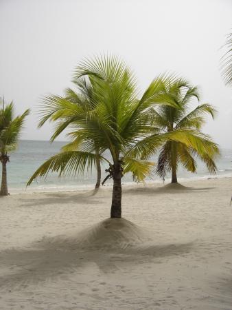 Bayahíbe, República Dominicana: plage de Mano Juan