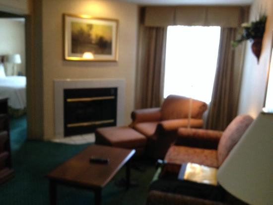 Homewood Suites by Hilton Columbus / Worthington: Living room