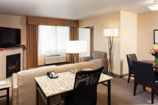 Holiday Inn Express Pullman: Suite