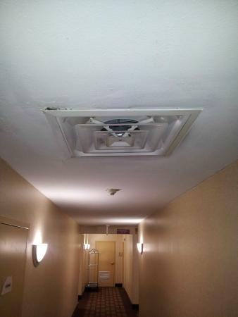BEST WESTERN Kimball Inn: Hallway ceiling.