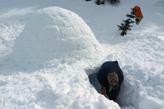 Columbia Falls, MT: Digging out an igloo at a winter campsite.