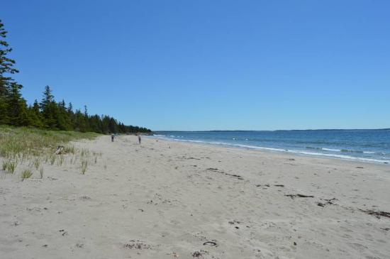 Petite Riviere, Canada: Rissers Beach in June