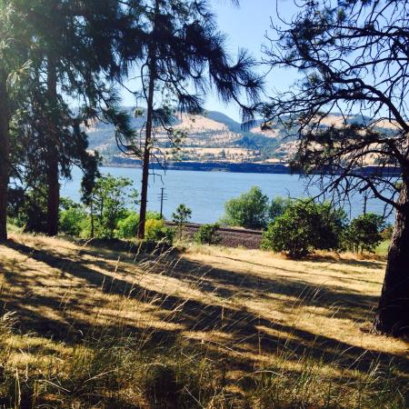 Memaloose State Park Campground: Spot 139 along the river.  It has shade and water